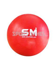 SM Cricket Hard Plastic Ball