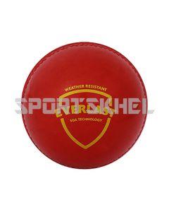 SG Everlast Synthetic Cricket Ball (12 nos)