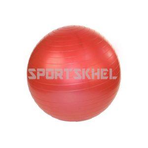 VectorX 55cm Gym Ball
