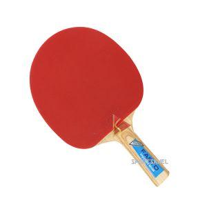 GKI Fasto Table Tennis Bat