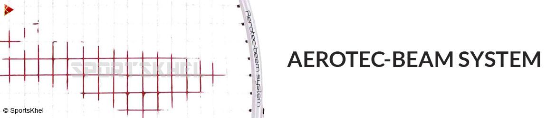 Lining Chen Long 300 Badminton Racket Aerotec Beam System